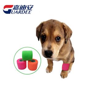宠物包扎绷带-狗